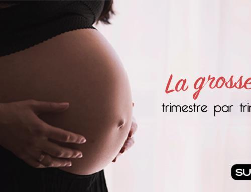 La grossesse, trimestre par trimestre