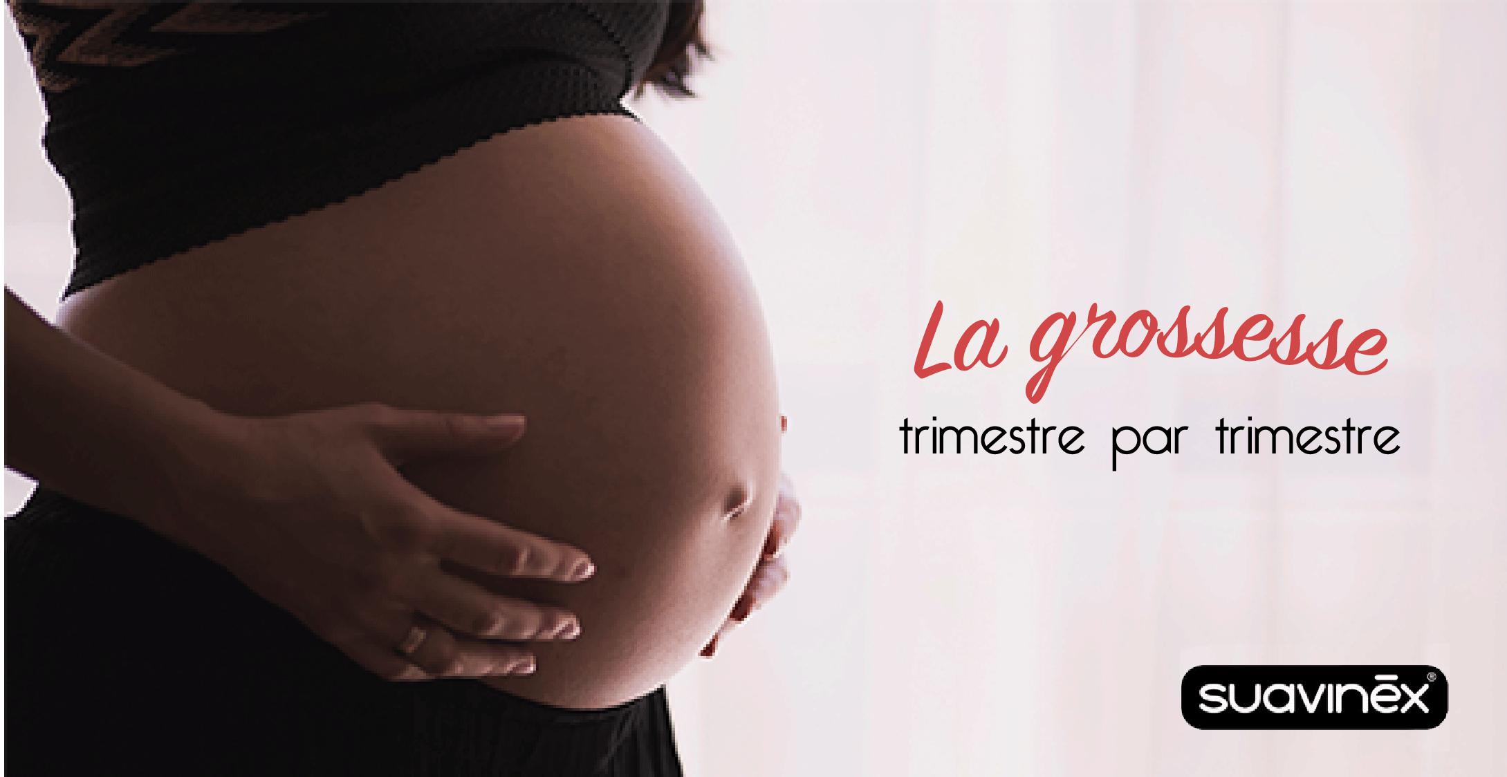 La grossesse trimestre par trimestre