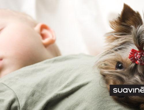 Les animaux de compagnie contribuent au bon développement des enfants