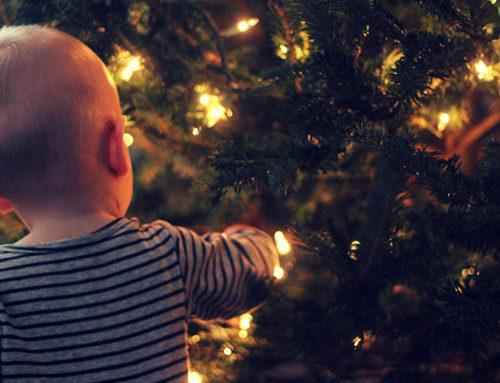 Bien choisir son sapin pour un super Noël avec bébé